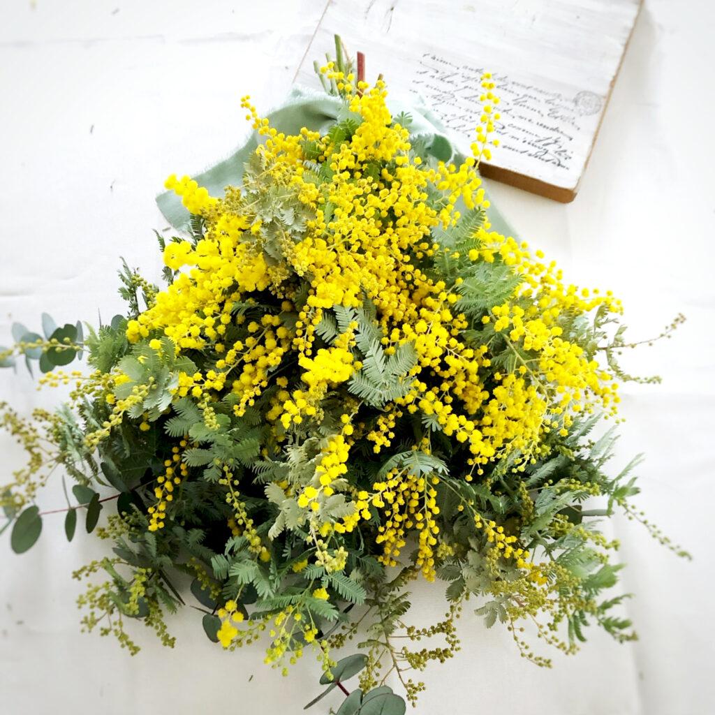 黄色い花の画像